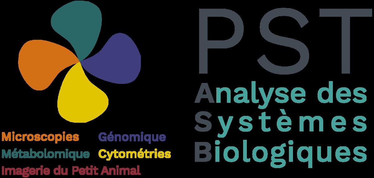 logo_pst